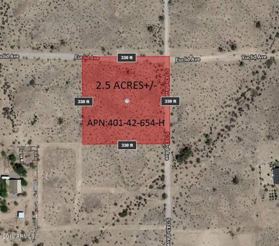 34301 W Euclid Avenue, Tonopah, AZ 85354 (MLS #5900199) :: Team Wilson Real Estate