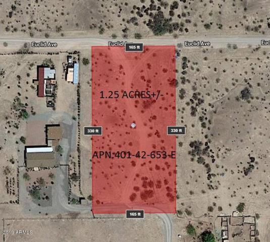 34401 W Euclid Avenue, Tonopah, AZ 85354 (MLS #5900201) :: Team Wilson Real Estate