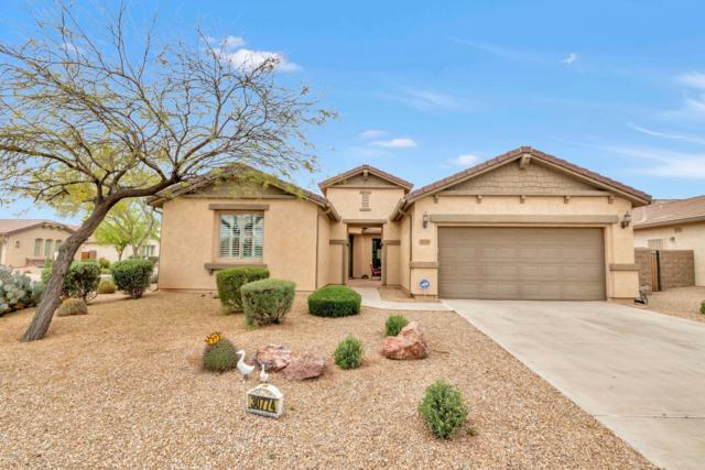 30774 N Glory Grove, San Tan Valley, AZ 85143 (MLS #5900217) :: The Jesse Herfel Real Estate Group