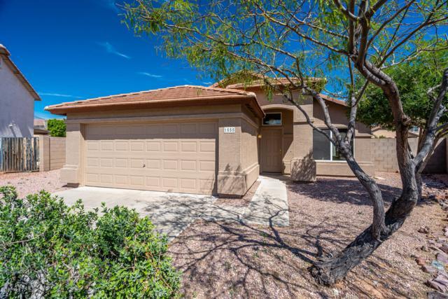 1555 S 229TH Court, Buckeye, AZ 85326 (MLS #5900223) :: Phoenix Property Group