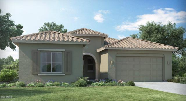 24110 N 165TH Lane, Surprise, AZ 85387 (MLS #5900227) :: CC & Co. Real Estate Team
