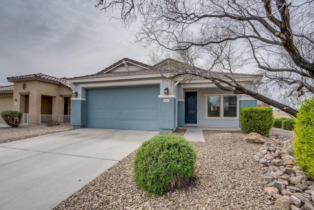 29654 N Red Hill Way, San Tan Valley, AZ 85143 (MLS #5900233) :: The Jesse Herfel Real Estate Group