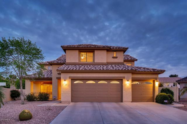 10803 W Sheridan Street, Avondale, AZ 85392 (MLS #5900267) :: CC & Co. Real Estate Team