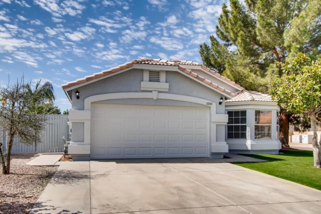 7355 E Laguna Azul Avenue, Mesa, AZ 85209 (MLS #5900309) :: Yost Realty Group at RE/MAX Casa Grande