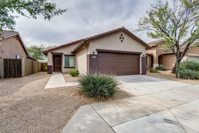 39604 N Harbour Town Way, Anthem, AZ 85086 (MLS #5900311) :: Occasio Realty