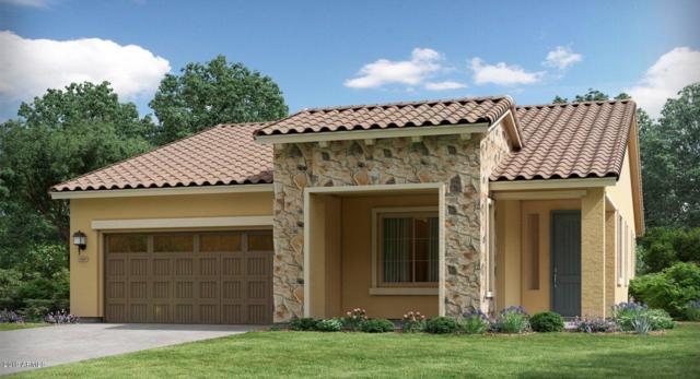 4689 N 204TH Avenue, Buckeye, AZ 85396 (MLS #5900314) :: Home Solutions Team