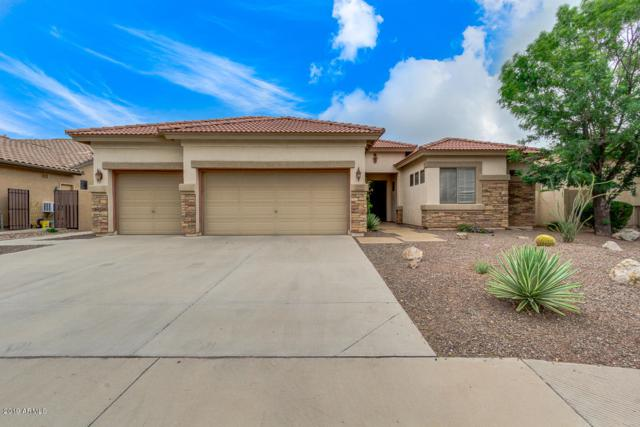 3846 E Meadowview Drive, Gilbert, AZ 85298 (MLS #5900319) :: The Jesse Herfel Real Estate Group