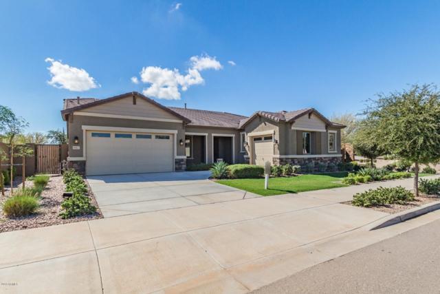 18857 E Carriage Way, Queen Creek, AZ 85142 (MLS #5900322) :: Arizona 1 Real Estate Team