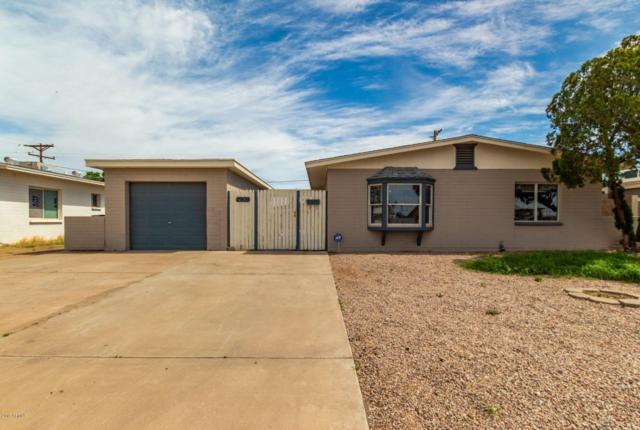 2909 N 81ST Drive, Phoenix, AZ 85033 (MLS #5900339) :: Yost Realty Group at RE/MAX Casa Grande