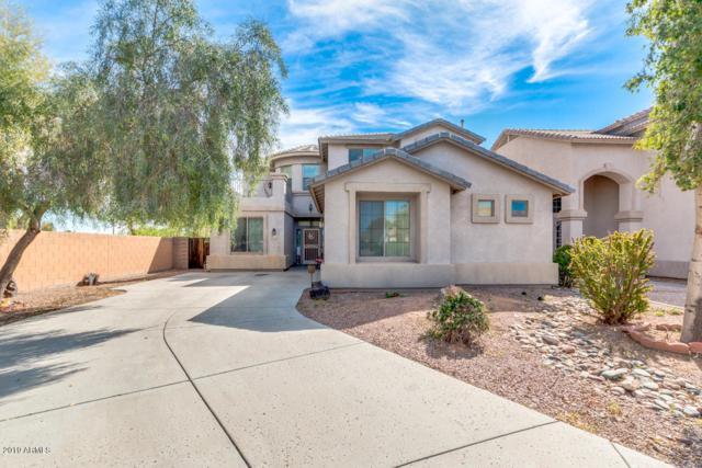 12159 N 149TH Drive, Surprise, AZ 85379 (MLS #5900342) :: RE/MAX Excalibur