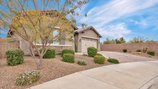 500 E Torrey Pines Place, Chandler, AZ 85249 (MLS #5900373) :: RE/MAX Excalibur
