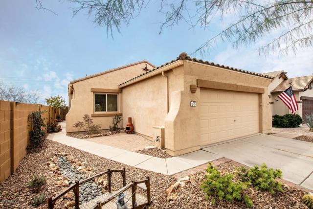 10785 E Second Water Trail, Gold Canyon, AZ 85118 (MLS #5900380) :: Occasio Realty
