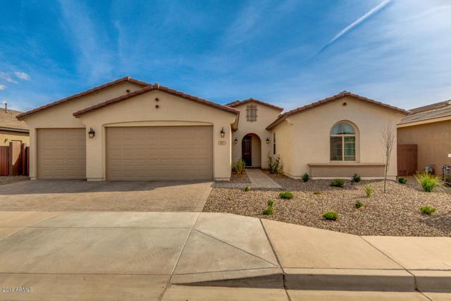 803 W Gum Tree Avenue, San Tan Valley, AZ 85140 (MLS #5900392) :: The Jesse Herfel Real Estate Group