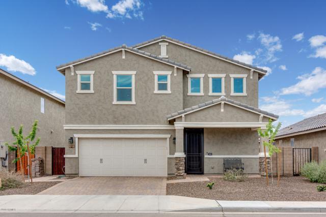 203 E Vicenza Drive, San Tan Valley, AZ 85140 (MLS #5900407) :: The Jesse Herfel Real Estate Group