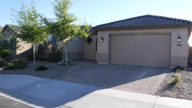 800 S 198TH Drive, Buckeye, AZ 85326 (MLS #5900427) :: Home Solutions Team