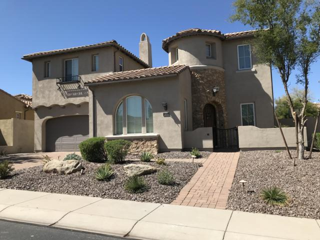 28768 N 68th Avenue, Peoria, AZ 85383 (MLS #5900468) :: Santizo Realty Group