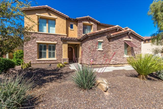 3574 E Glacier Place, Chandler, AZ 85249 (MLS #5900497) :: Santizo Realty Group