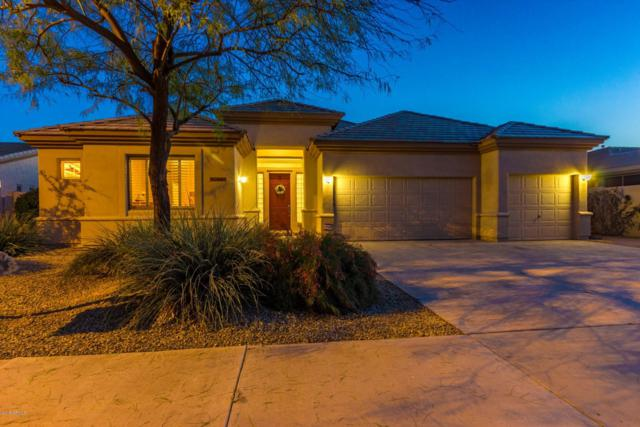 14453 W Wilshire Drive, Goodyear, AZ 85395 (MLS #5900498) :: CC & Co. Real Estate Team