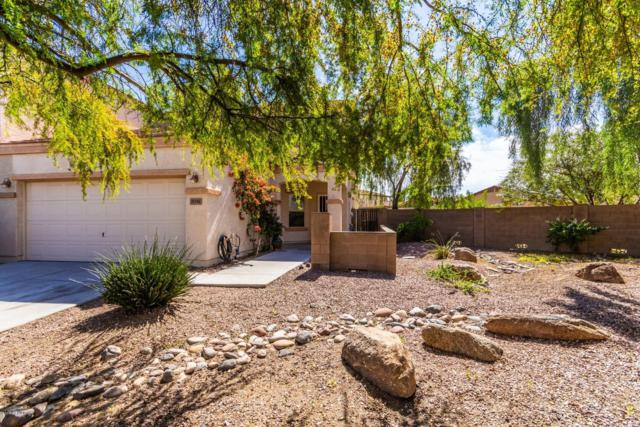 8741 W Aster Drive, Peoria, AZ 85381 (MLS #5900509) :: Brett Tanner Home Selling Team