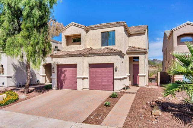 8141 N 13TH Place, Phoenix, AZ 85020 (MLS #5900510) :: Yost Realty Group at RE/MAX Casa Grande