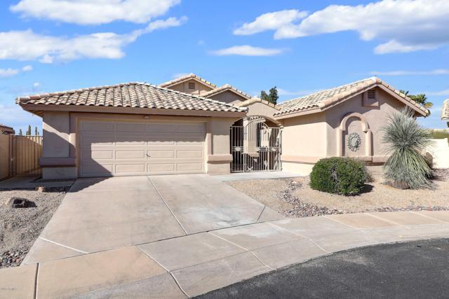 14182 W Mountain Laurel Trail, Surprise, AZ 85374 (MLS #5900521) :: Home Solutions Team
