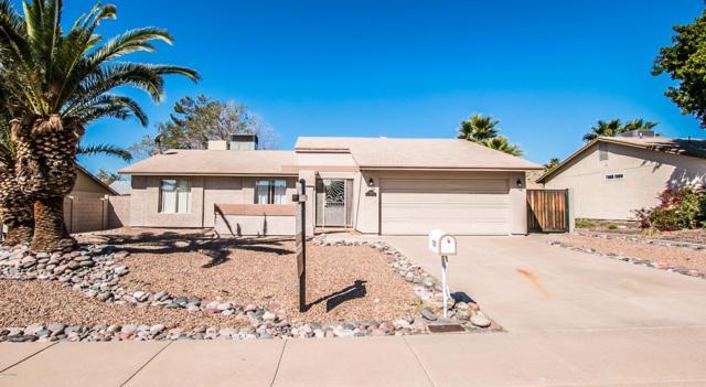 10034 S 46TH Way, Phoenix, AZ 85044 (MLS #5900529) :: Yost Realty Group at RE/MAX Casa Grande