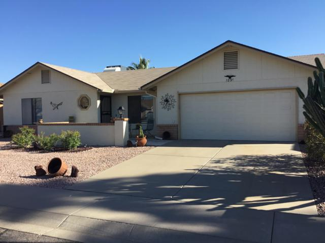 1891 Leisure World, Mesa, AZ 85206 (MLS #5900540) :: Arizona 1 Real Estate Team