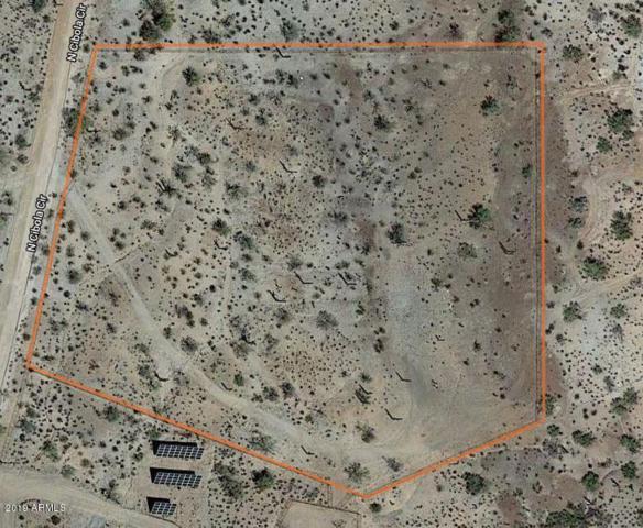 28349 N Cibola Circle, Queen Creek, AZ 85142 (MLS #5900541) :: Arizona 1 Real Estate Team