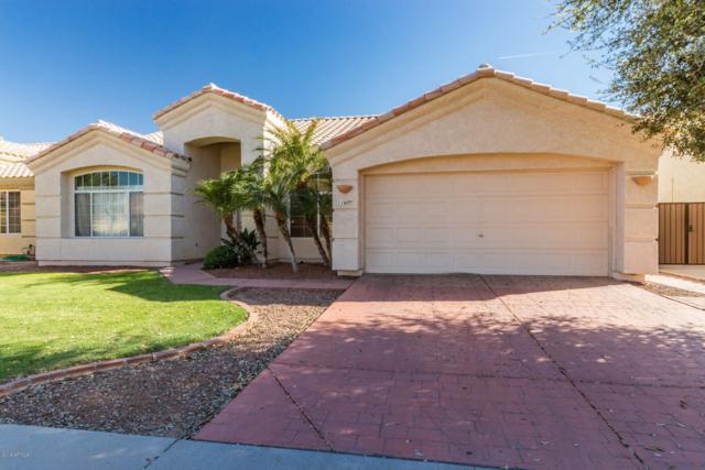 11609 W Laurelwood Lane, Avondale, AZ 85392 (MLS #5900543) :: Home Solutions Team