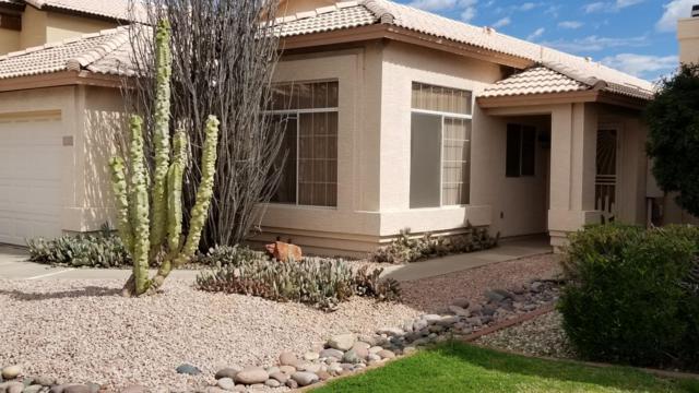 17609 N 2nd Avenue, Phoenix, AZ 85023 (MLS #5900557) :: Arizona 1 Real Estate Team