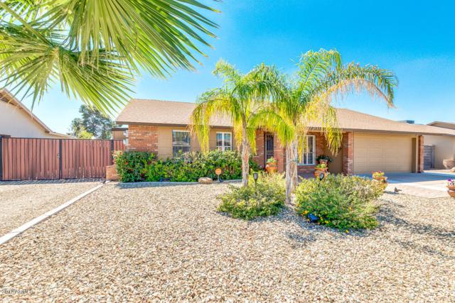 3309 E El Moro Avenue, Mesa, AZ 85204 (MLS #5900559) :: Arizona 1 Real Estate Team