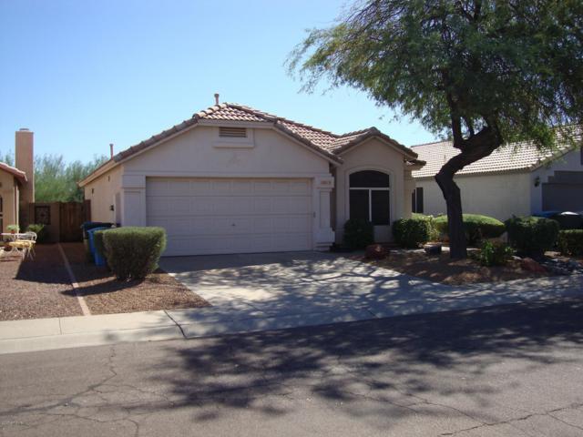 18819 N 1ST Avenue, Phoenix, AZ 85027 (MLS #5900568) :: Devor Real Estate Associates