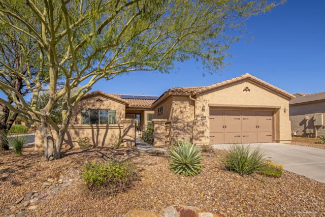 27434 N 130TH Drive, Peoria, AZ 85383 (MLS #5900585) :: Brett Tanner Home Selling Team