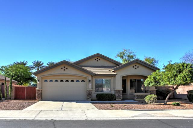 1447 E Carob Place, Chandler, AZ 85286 (MLS #5900621) :: The Jesse Herfel Real Estate Group