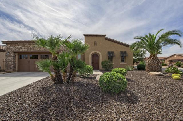 29440 N 130TH Drive, Peoria, AZ 85383 (MLS #5900634) :: Santizo Realty Group