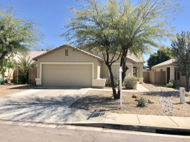 3813 N 125TH Drive, Avondale, AZ 85392 (MLS #5900648) :: Home Solutions Team