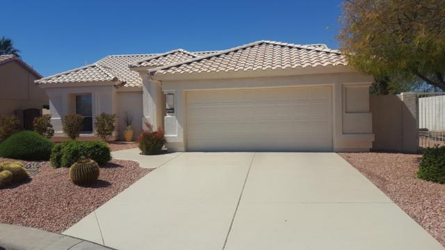 4078 N 162ND Drive, Goodyear, AZ 85395 (MLS #5900657) :: Home Solutions Team