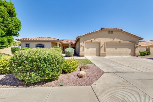 5519 N 131ST Drive, Litchfield Park, AZ 85340 (MLS #5900671) :: Home Solutions Team