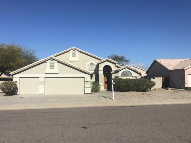 4414 E Morning Vista Lane, Cave Creek, AZ 85331 (MLS #5900678) :: RE/MAX Excalibur