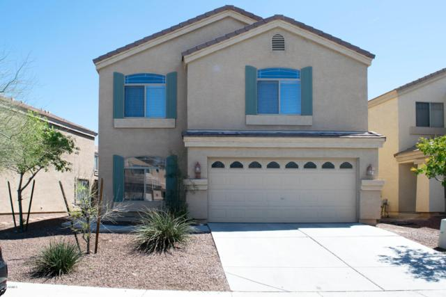 6811 N 130TH Avenue, Glendale, AZ 85307 (MLS #5900683) :: Home Solutions Team