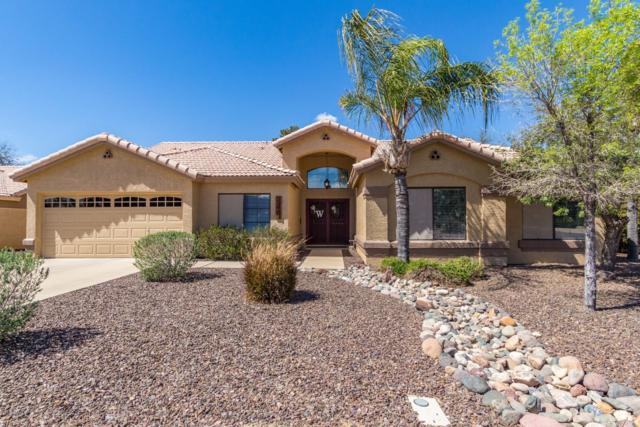 12464 N 69TH Avenue, Peoria, AZ 85381 (MLS #5900691) :: Phoenix Property Group