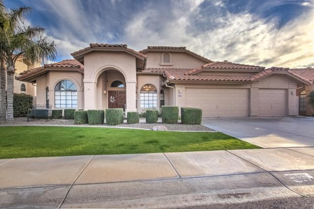 1585 W Honeysuckle Lane, Chandler, AZ 85248 (MLS #5900698) :: The Jesse Herfel Real Estate Group