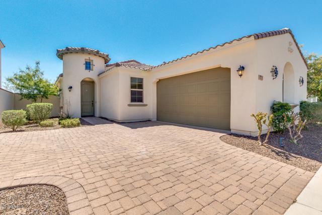 10717 E Hawk Avenue, Mesa, AZ 85212 (MLS #5900702) :: Conway Real Estate