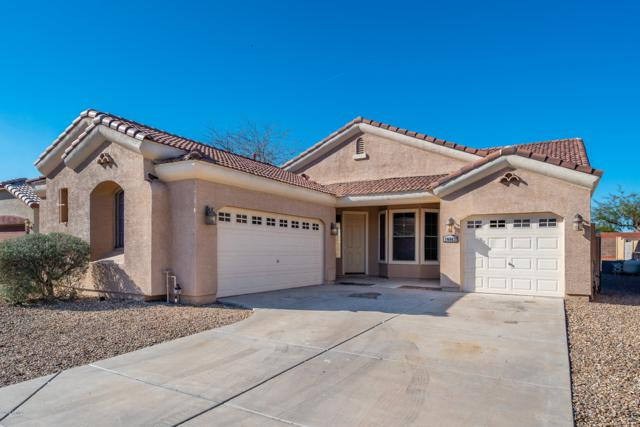 10862 W Chase Drive, Avondale, AZ 85323 (MLS #5900717) :: The Daniel Montez Real Estate Group