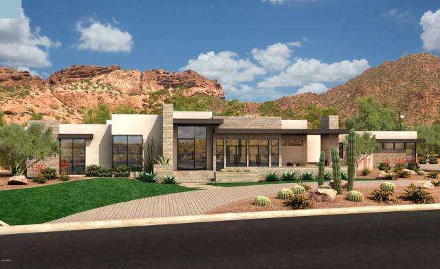 4822 E Palomino Road, Phoenix, AZ 85018 (MLS #5900731) :: The W Group