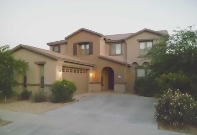 18427 W Stinson Drive, Surprise, AZ 85374 (MLS #5900756) :: Home Solutions Team