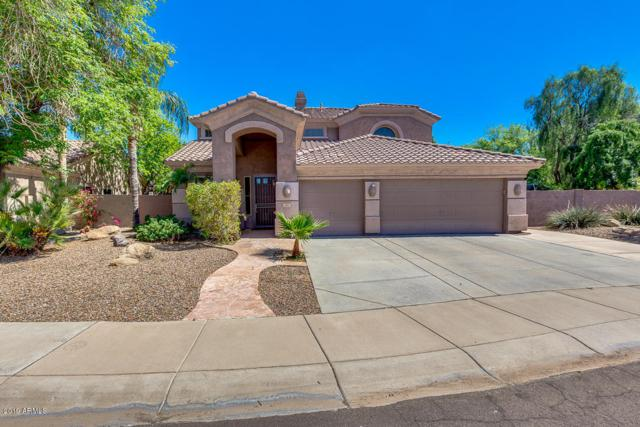 1373 S Sean Drive, Chandler, AZ 85286 (MLS #5900757) :: The Jesse Herfel Real Estate Group