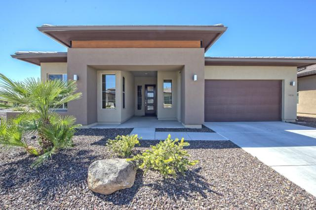 30024 N Suscito Drive, Peoria, AZ 85383 (MLS #5900776) :: Riddle Realty