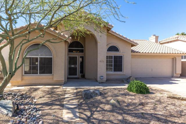 9175 E Siesta Lane, Scottsdale, AZ 85255 (MLS #5900777) :: Riddle Realty