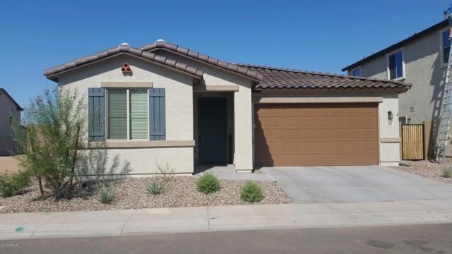266 N 79TH Way, Mesa, AZ 85207 (MLS #5900789) :: Conway Real Estate